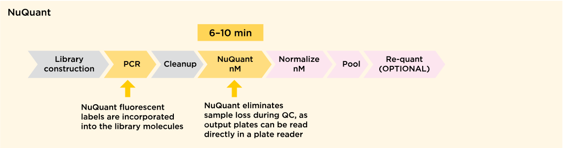 Library Quantification Workflow Comparison