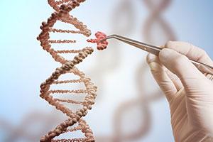CRISPR-Cas9 Genome Editing