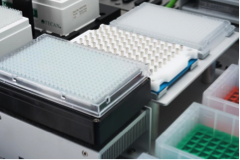 Magnetic separation for bead-based NAP and PCR clean-up